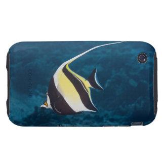 Underwater life;FISH: A Moorish Idol (Zanclus Tough iPhone 3 Case