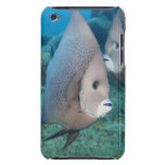 Underwater Life, FISH:  a pair of Gray Angelfish iPod Touch Covers