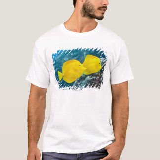 Underwater life; FISH: A Pair of Yellow Tangs T-Shirt