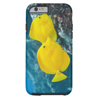 Underwater life; FISH: A Pair of Yellow Tangs Tough iPhone 6 Case