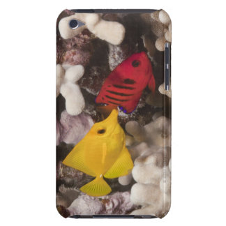 Underwater life; FISH: A Yellow Tang (Zebrasoma iPod Touch Case-Mate Case
