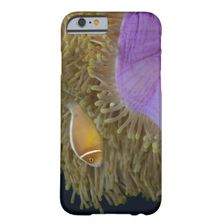 Underwater LIfe; FISH: Clownfish (Pink Barely There iPhone 6 Case