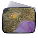 Underwater LIfe; FISH: Clownfish (Pink Laptop Computer Sleeve