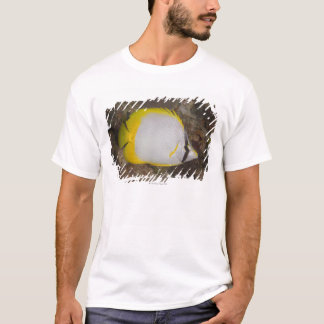 Underwater Life, FISH: Colorful Spotfin T-Shirt