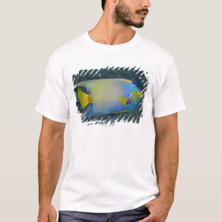 Underwater Life; FISH:  Queen Angelfish T-Shirt