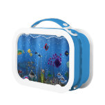Underwater Love - Lunch Boxes