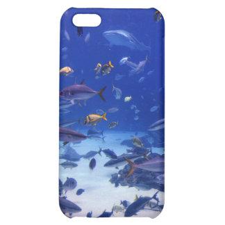 Underwater Magic iPhone 5C Case
