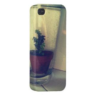 underwater mini plant iPhone 4 cases