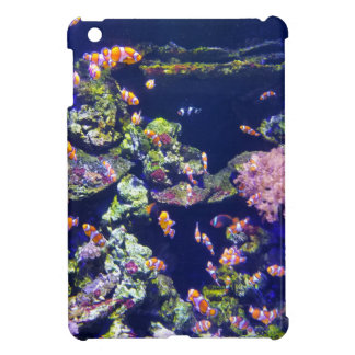 Underwater Orange Clown Fish Around Coral Cover For The iPad Mini