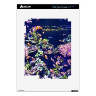 Underwater Orange Clown Fish Around Coral iPad 3 Decals
