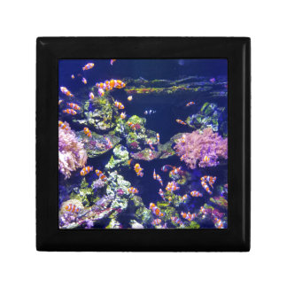 Underwater Orange Clown Fish Around Coral Keepsake Box