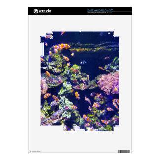 Underwater Orange Clown Fish Around Coral Skins For The iPad 2