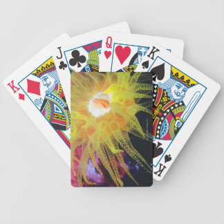 Underwater organism bicycle playing cards