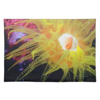Underwater organism cloth placemat