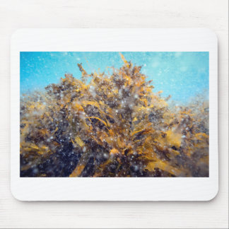 Underwater plankton soup and kelp mouse pad