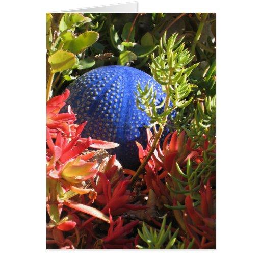 Underwater Plant Garden Blank Art Card