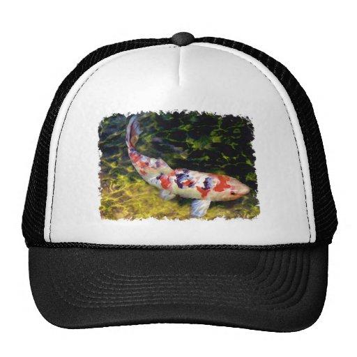 Underwater Sanke Koi Hats