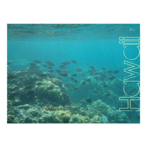Underwater Scene Coral Reef Hawaii Poster