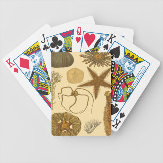 Underwater Sea Creatures Bicycle Playing Cards