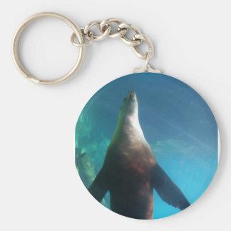 Underwater Sea Lion Keychain