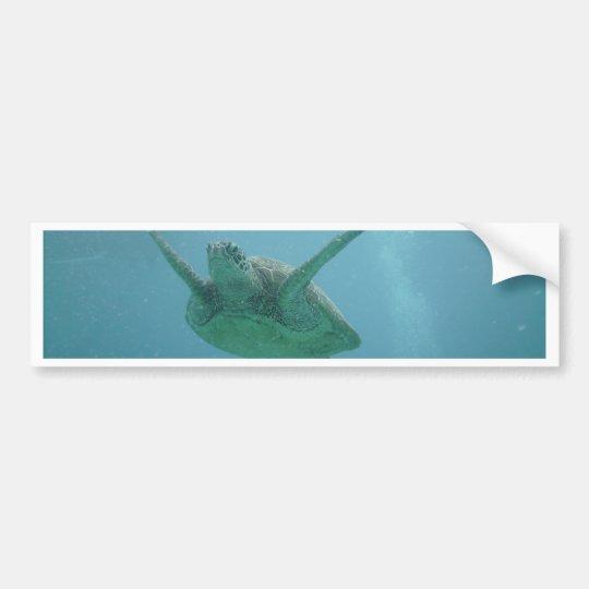 Underwater Sea Turtle Bumper Sticker