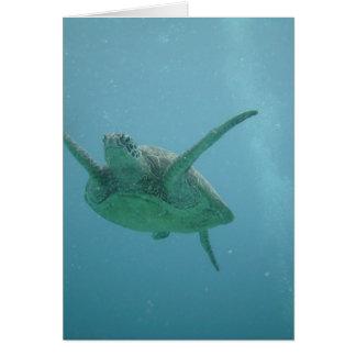 Underwater Sea Turtle Greeting Card