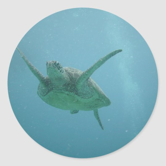 Underwater Sea Turtle Classic Round Sticker