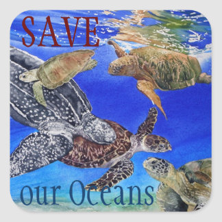 Underwater Sea Turtles Art Endangered Species Square Sticker