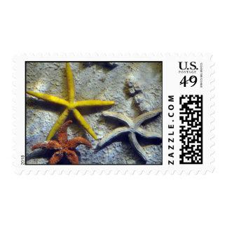 Underwater Starfish Postage
