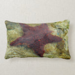 Underwater Starfish Tropical Animal Photography Lumbar Pillow