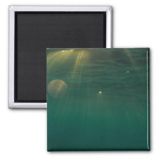 Underwater Sunset 2 Inch Square Magnet