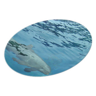 Underwater swimming dolphin melamine plate