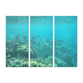 Underwater tropical fish scene canvas canvas print
