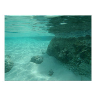 Underwater Tropical Island Photography Poster