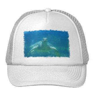 Underwater Turtle Baseball Hat