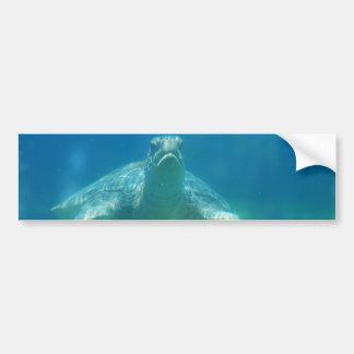 Underwater Turtle Bumper Sticker