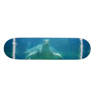 Underwater Turtle Skateboard
