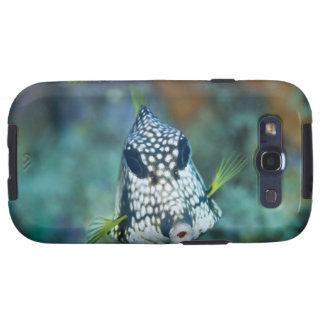 Underwater view of Smooth Trunkfish (Lactophrys Samsung Galaxy S3 Cases