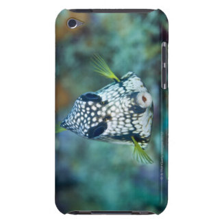 Underwater view of Smooth Trunkfish (Lactophrys iPod Touch Cases