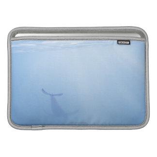 Underwater view of whale MacBook sleeve