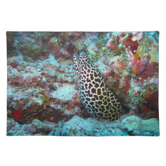 Underwater view with Eel on Placemats