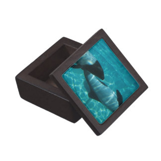 Underwater Whales Premium Gift Box