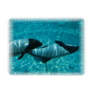 Underwater Whales Premium Magnet Vinyl Magnets