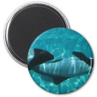 Underwater Whales Round Magnet Refrigerator Magnets