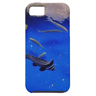 Underwater world clownfish swimming in the ocean iPhone 5 cases