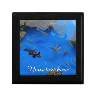 Underwater world fishes swimming jewelry box
