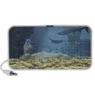 Underwater world Speakers iPod Speakers
