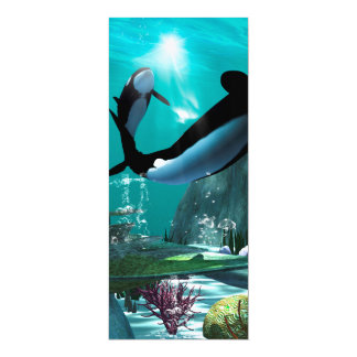 """Underwater world with funny playing orcas 4"""" x 9.25"""" invitation card"""