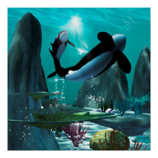 Underwater world with funny playing orcas poster