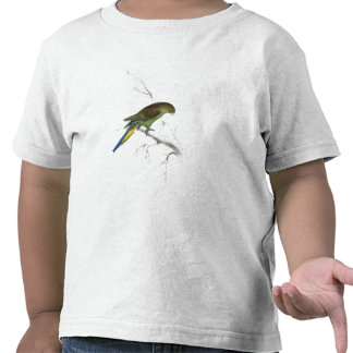 Undulated Parrakeet by Edward Lear Tshirt